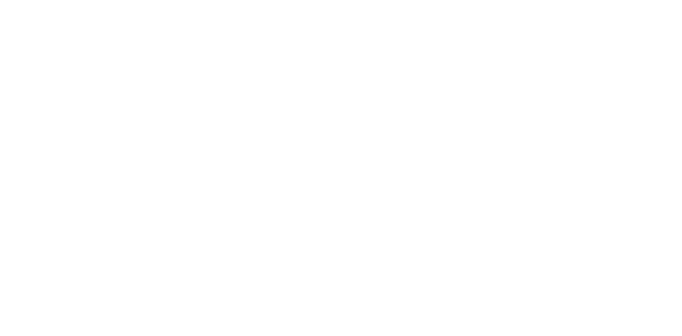 The Property Revivers